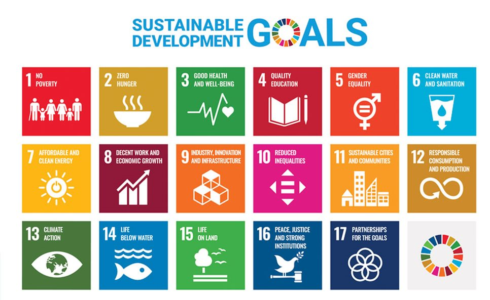 Graphic of seventeen sustainable development goals
